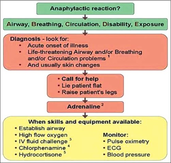 Triggers and Treatment of Anaphylaxis
